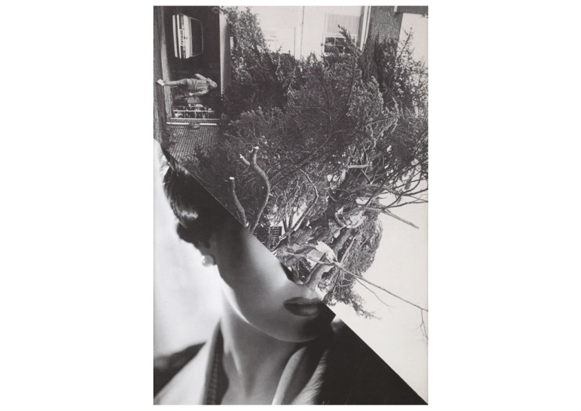 STEZAKER, John - Film Portrait Disaster II, 2005 - Collage - 23,5 x 16 cm
