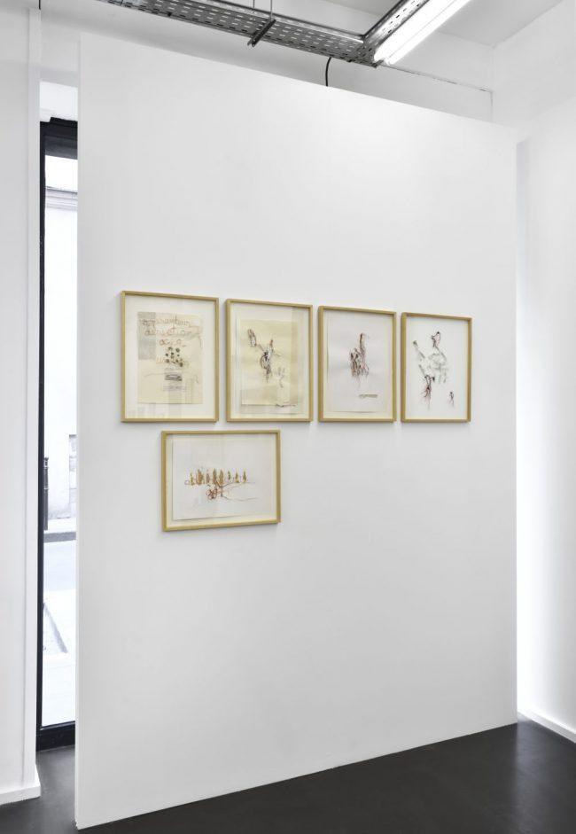 Vue de l'exposition Cut & Paste, Galerie Maïa Muller, 2016 - Série de la Langue Secouée