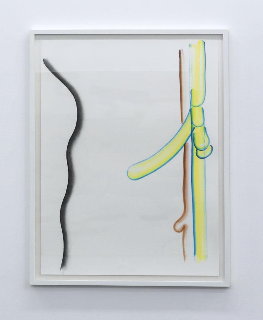 Etude de liane - Encre et gouache sur papier - 100 x 70 cm - 2018