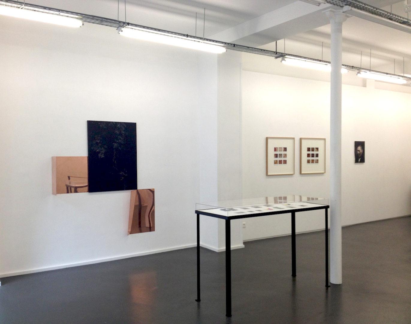Vue d'exposition Les Lucioles - Carte blanche à Vincent Bizien, Galerie Maïa Muller 2015
